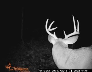 FlickWild Outdoors Videos - Nice Buck