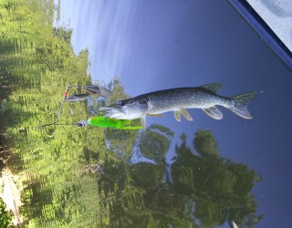 FlickWild Outdoors Videos - Kayak Fishing