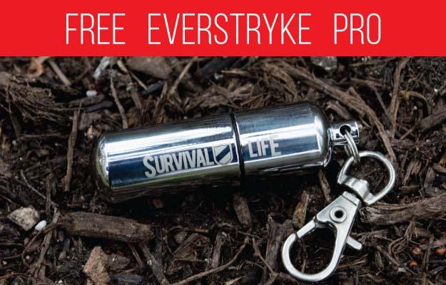 FREE Everstryke Pro
